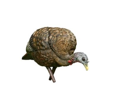 LCD Feeder Hen Turkey Decoy