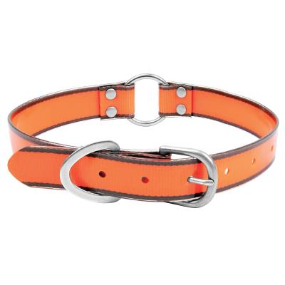 SMALL SAFETY ORANGE COLLAR Hover