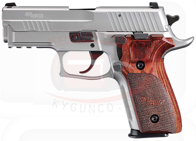 P229 Elite 9mm 2-12rd SS Ns Wo Hover