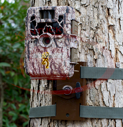 DISC-TRAIL CAMERA TREE MOUNT